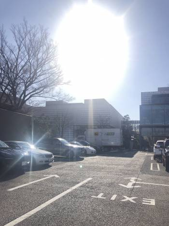 代官山(2019/01/13 13:40)浅野 智美のブログ画像