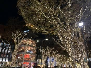 イルミネーション(2019/12/21 11:08)愛澤 かなのブログ画像