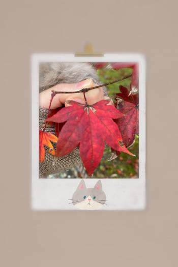 🍁(2020/11/13 12:09)月城 はるきのブログ画像